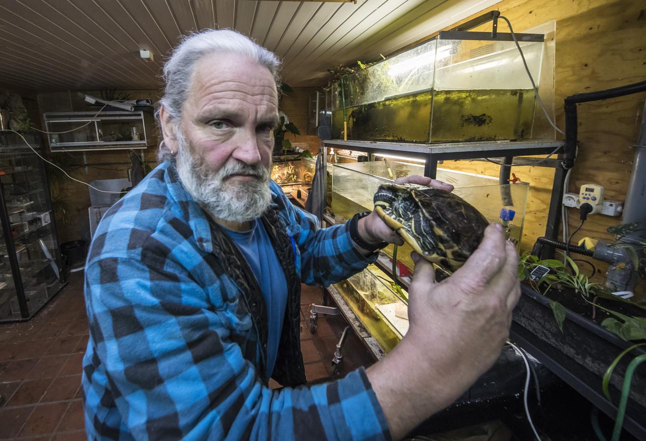 Enschede 20171213 Wim Arentz schildpaddenopvang neemt afscheid van zijn schildpadden editie:Enschede Foto Reinier van Willigen