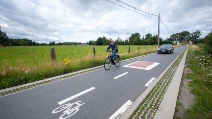 """Ribbelstroken Oude Liersebaan worden verwijderd na zoveelste val van fietser: """"Mij zien ze er nooit meer. Het is er te gevaarlijk"""""""