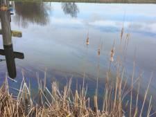 'Motorolie geloosd in Boonervliet bij Maassluis'