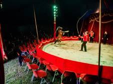 Oeps, circus Culemborg toch op een andere plek