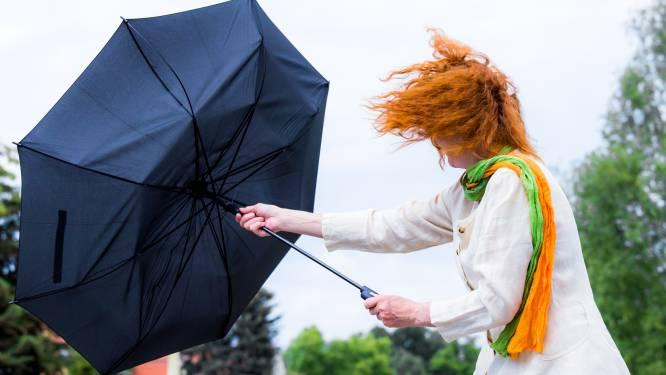 Onstuimige zondag: code geel wegens hevige wind en soms fikse buien, noodnummer 1722 geactiveerd