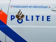 Virtuele dienst meemaken op  achterbank van Edese politiewagen