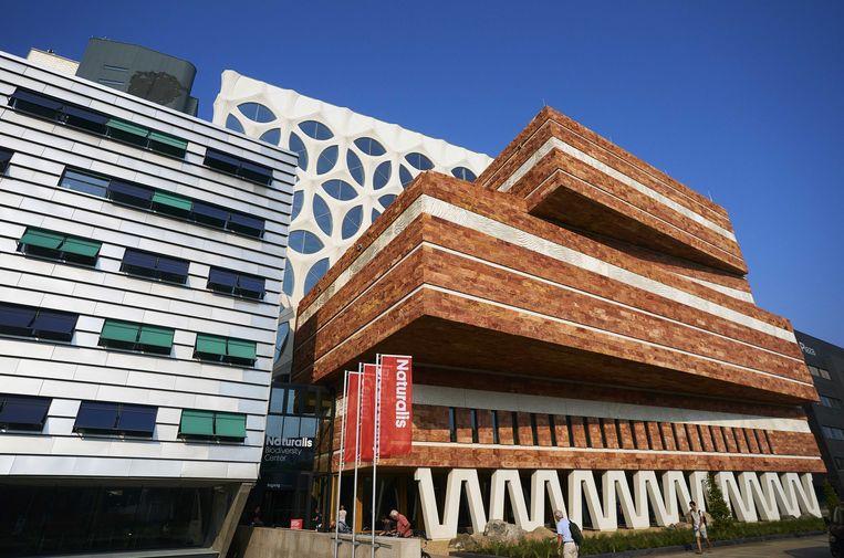 Het Naturalis in Leiden. Het nieuwe filiaal wordt geopend op de Zuidas.  Beeld ANP