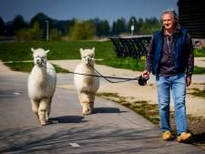Ambachtse alpaca's Ohio en Kwint krijgen een eigen boek
