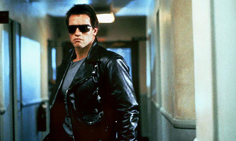 Schwarzenegger Beeld