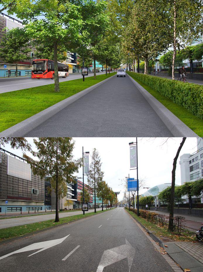 Impressie van de Mathildelaan in Eindhoven voor en na de herinrichting.