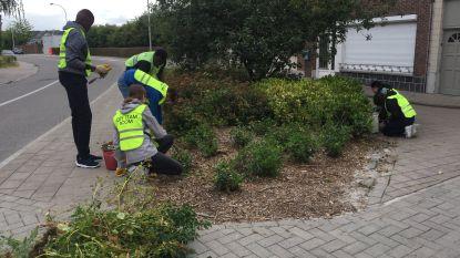 City Team maakt Dirkputstraat weer proper