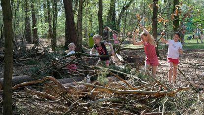 Honderden kinderen bouwen kampen in bos