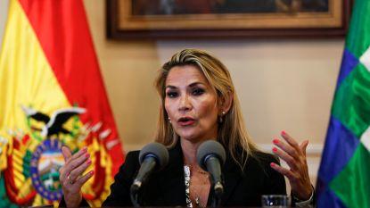 Oppositielid roept zichzelf uit tot president van Bolivia