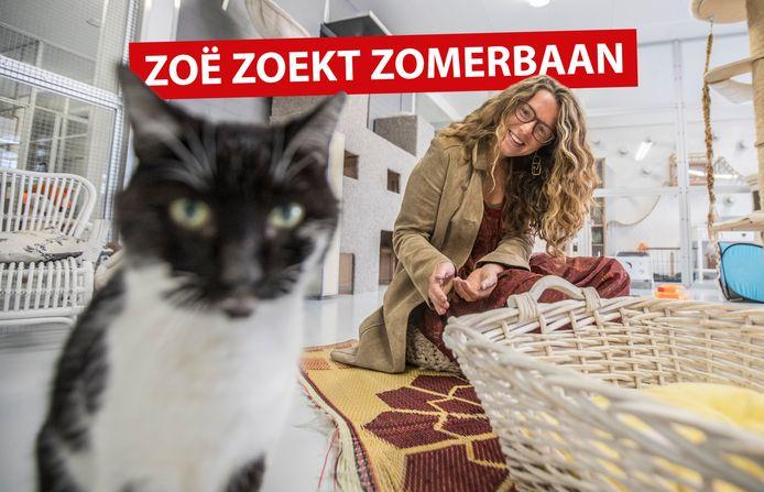 De camera is interessanter dan de kattensnoepjes die Zoë in haar hand heeft.