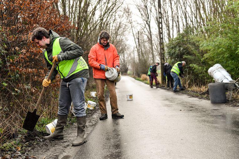 Enkele vrijwilligers bereiden de jaarlijkse paddenoverzet voor in Wieze.