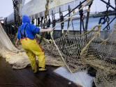 Brancheorganisatie VisNed over vermiste Urker vissers: 'Onzekerheid is dramatisch'