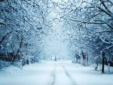 Kleurrijk 'Snow'-spektakel in Heerle