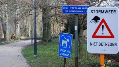 Vlaanderen zet zich schrap voor storm: check hier de maatregelen in jouw buurt