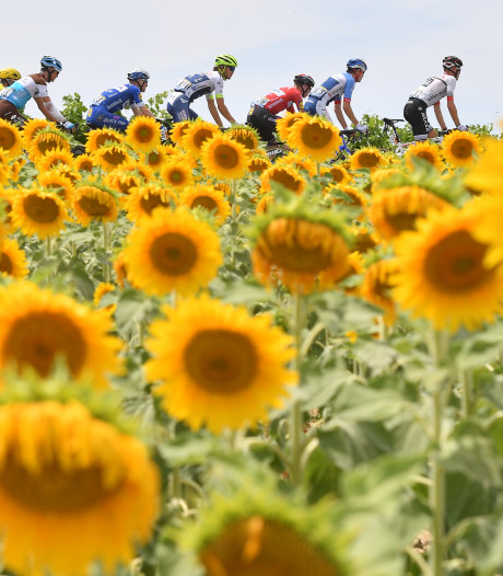 Wildcards Tour de France voor teams Slagter en Quintana