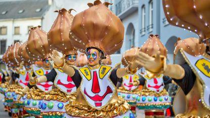 Een vip zijn met carnaval kost minstens 249 euro