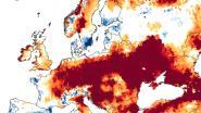 België bij zwaarst getroffen landen door extreme droogte in Europa: ons grondwater doet het slechter dan dat in Spanje en Zuid-Italië