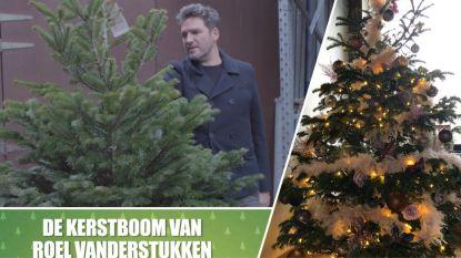 Kerstboom kijken bij... Roel Vanderstukken
