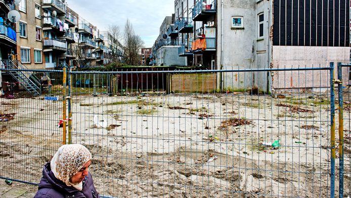 Woningen in een wijk in Rotterdam.
