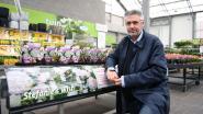AVEVE verkoopt opnieuw rozen ten voordele van onderzoek naar lymfeklierkanker