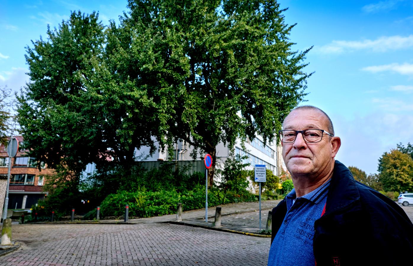 Theo de Bruin is tegen de bomenkap van twee grote bomen tegenover zijn huis in de Wilhelminastraat in Sliedrecht.