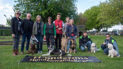 H-onderons organiseert eerste hondenwandelingen in Wetteren