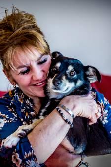 Hondje Bobbie na weken zwerven weer terug bij baasje
