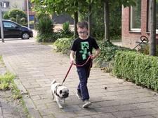 In Tiel werd voor ruim 6.000 euro aan hondenpoepboetes uitgeschreven