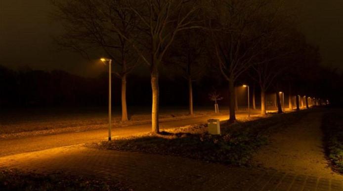 het fietspad langs de gilzerbaan krijgt fiets en vleermuisvriendelijke verlichting archieffoto