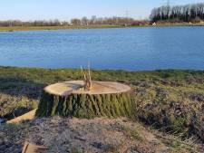 SP boos over kap 120 bomen tussen Hengelo en Borne