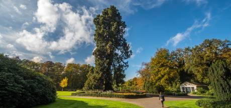 Ledeboerpark in Enschede behoort tot de vijf mooiste parken ter wereld