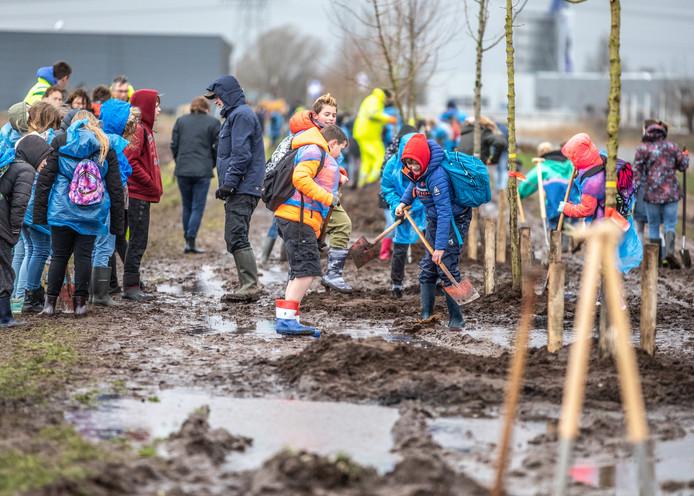 Zwolse scholieren plantten woensdag 57 nieuwe bomen langs de watergang tussen de Oldenburgstraat en de Wehkamp-vestiging in Hessenpoort.