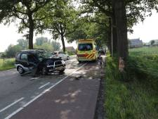 Vrouw gewond bij botsing tegen boom in Roosendaal