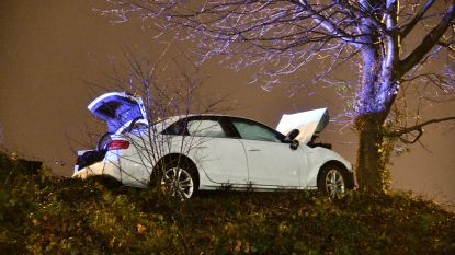 Auto slipt tegen boom