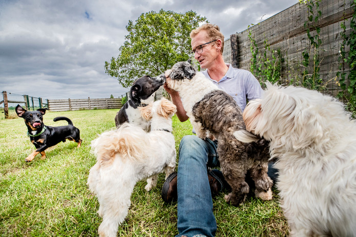 Marcel van Rooijen van Dierenhotel A1 tussen de honden.