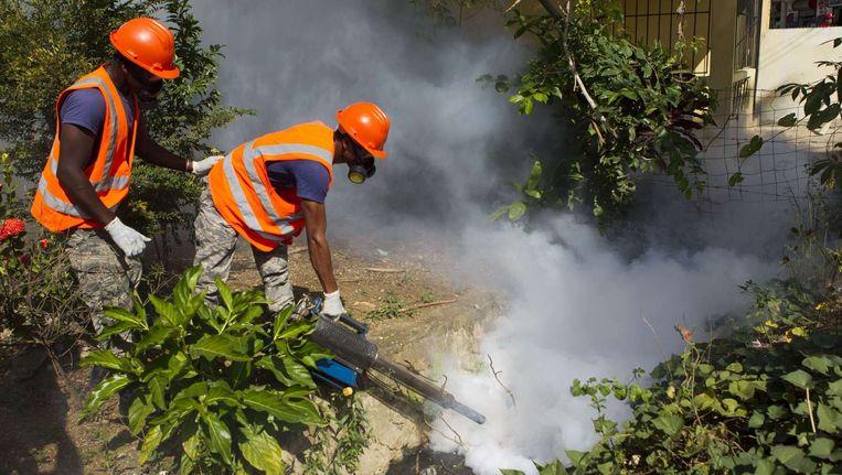 Bestrijding van de mug die het zika-virus verspreidt, dit is in de Dominicaanse Republiek Beeld null