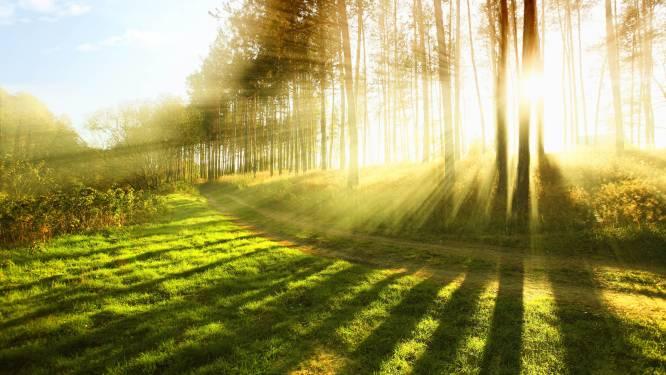 Lente 2015 was zonnig en droog maar tikkeltje te koud