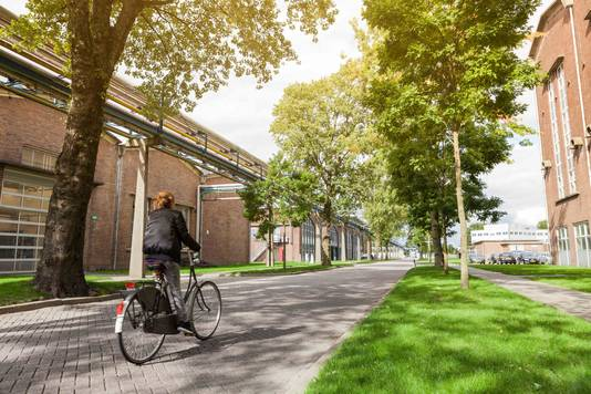 Industriepark Kleefse Waard in Arnhem, waar de biomassacentrale moet komen.