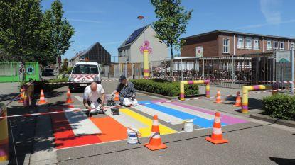 Opvallende zebrapaden in regenboogkleuren