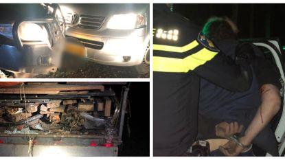 'Plankjesdumper' op heterdaad betrapt, ramt bij arrestatie auto boswachter
