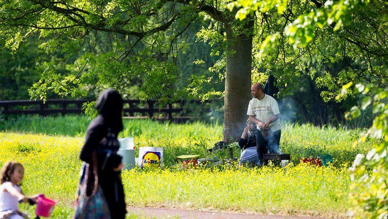 Ook in het nieuwe Sloterpark mag gebarbecued worden. Beeld ANP