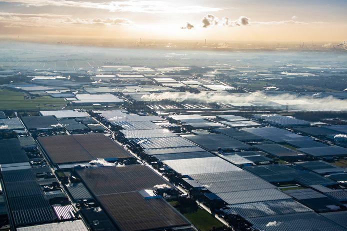 Westland, kassengebied vanuit de lucht.