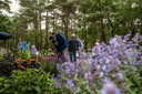 Bloem en tuin Nuenen