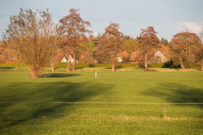 De weilanden aan de Molenweg in Heino horen tot de locaties waarop een voorlopig voorkeursrecht ligt en die kansrijk zijn voor woningbouw.