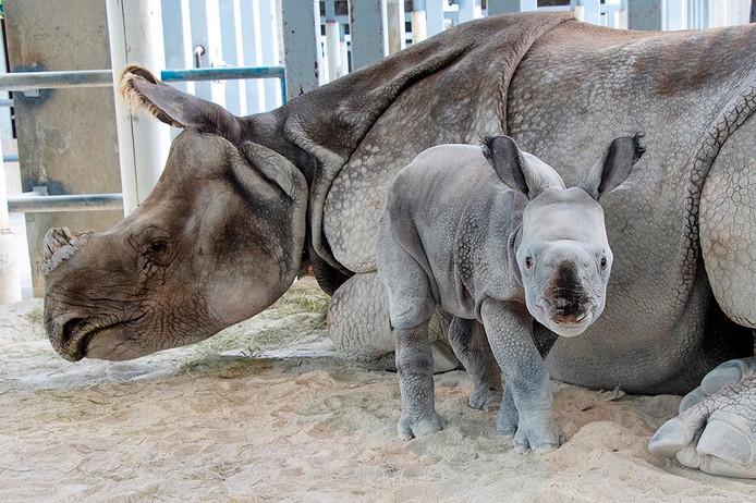 Moeder Akuti met haar nu twee dagen oude baby.