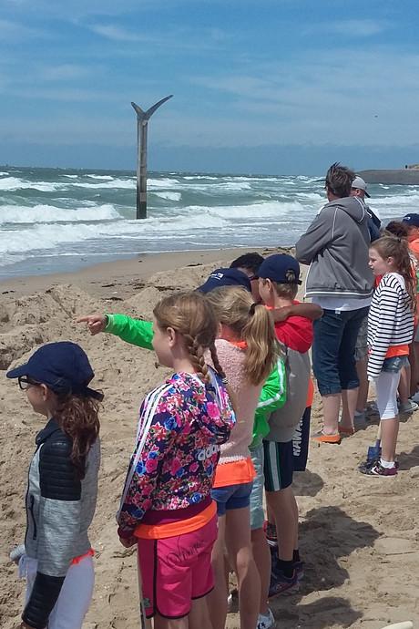 Dijken bouwen tegen de woeste golven tijdens Battle of the Beach