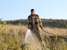 Zeeuwse brandweer in hoogste staat van paraatheid