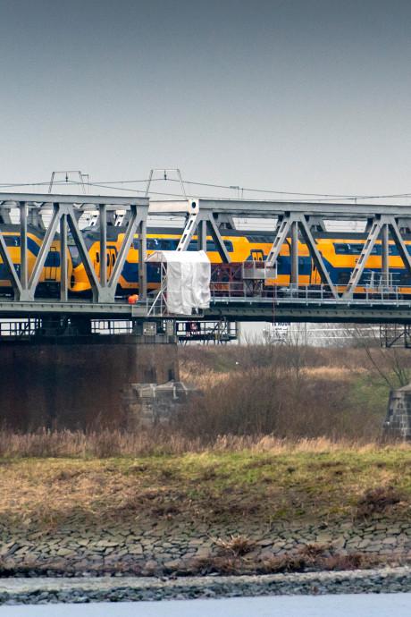 Pad langs de spoorbrug over de Waal bij Waardenburg groeit 6 meter per dag