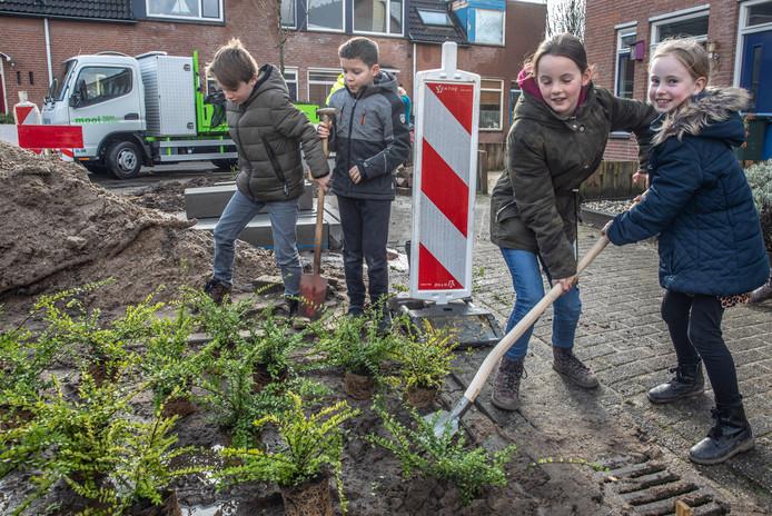 Klinkers eruit, groen erin met dank aan Zwolse basisschoolkinderen.