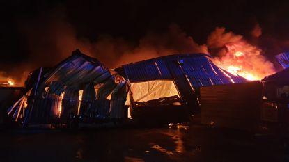 """Zware uitslaande brand vernielt loods in Beervelde: """"Vermoedelijk na blikseminslag"""""""